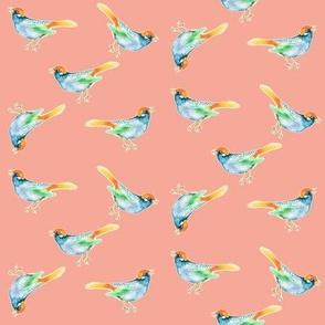 SongBird, Blue and Orange on Blush