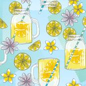 Lemonade Jars