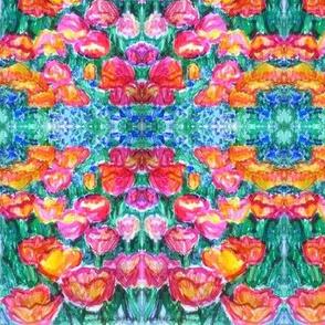 summer_tulips