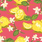 Chintzy Citrus co-ordinate