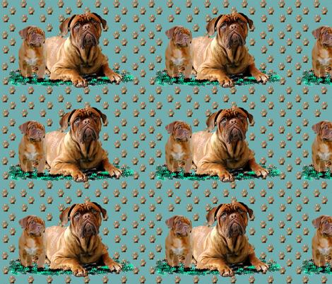 dogue_de_bordeaux_mother_and_pup
