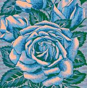 Madonna Roses