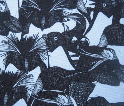 just penguins black white