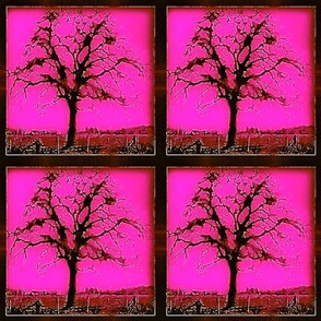 Garry Oak Tree  - bright pink