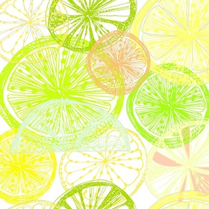 when_life_throws_lemons