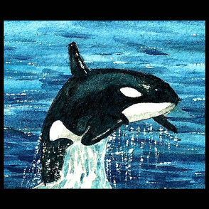 Orca Watercolor