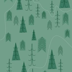 Evergreen Trails