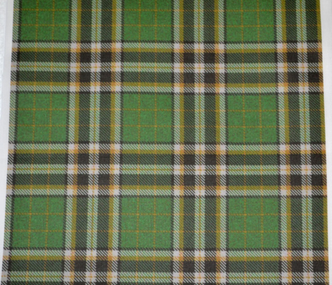 Green Plaid 2