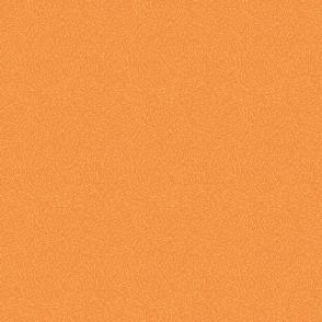 Fuzzy - Oranges