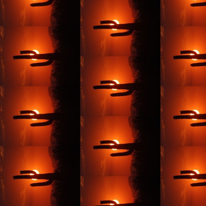 Cactus Sunset No. 2