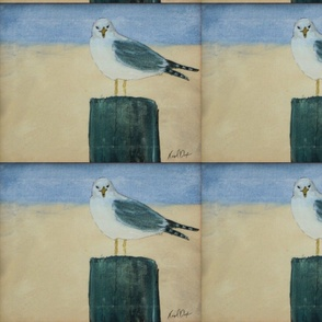 Sea Gull on a perch