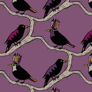 Thorn birds purple black
