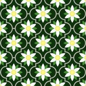 c-rhombus flower : goat