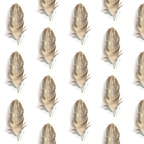 Feathers_offset