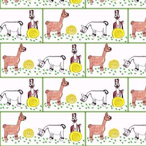 Llamas-ed