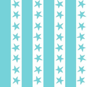 Stars and Stripes - Aqua by Andrea Lauren