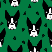 boston terrier - kelly green by andrea lauren