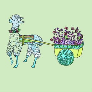 Baby llama blue w green background