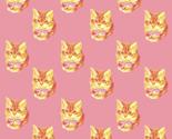 Kitten_dot_sunrise_thumb