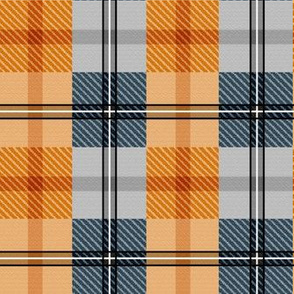 gingham plaid - fox run 4