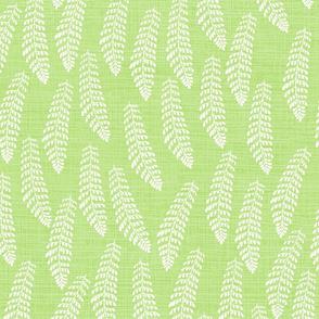 Fern Spring Green