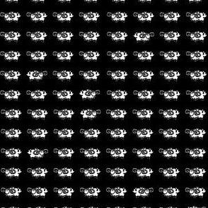 Ultra_Nighttime_Ram-ble