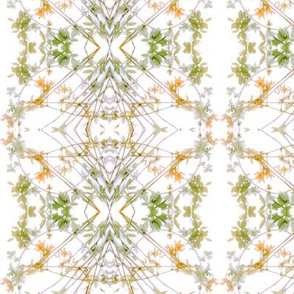 Leaves & Buds (Apricot & Green)
