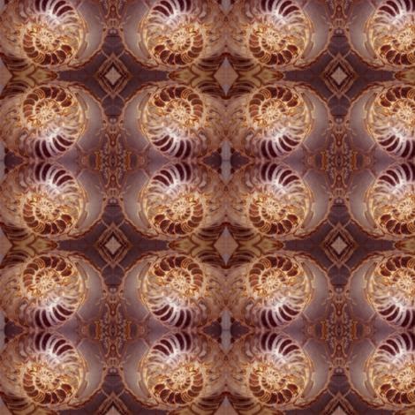 Glowy Fossil Spirals