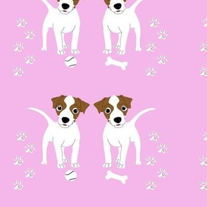 Tan White Jack Russell Pink