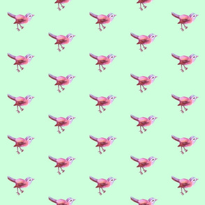 Bird_Pink_on_Mint