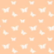 Butterflies_Pale_on_Apricot