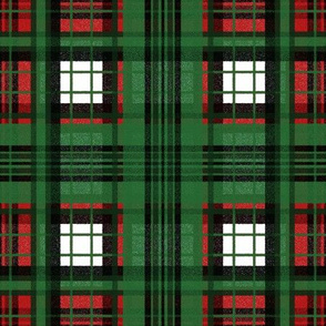 Flannel Plaid ~  Christmas Ride