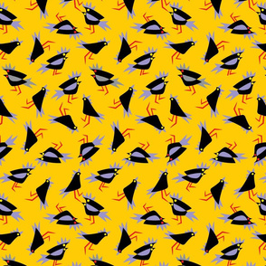 Black_cockatoos_yellow
