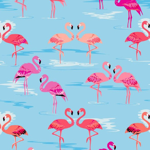 flamingos love aqua