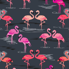 flamingos love graphite