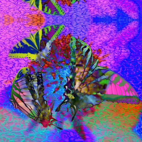 On The Wings of Butterflies
