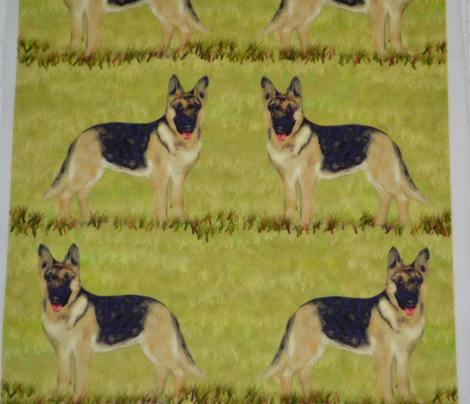 German Shepherd Dog on Grass