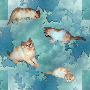Cloudy with a chance of kittens