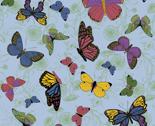 Rrbutterflies_main2_thumb