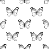 Butterfly pattern. Watercolor