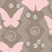 Butterfly Life Cycle with Pink