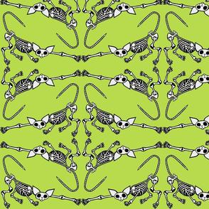 SphynxieBonez Reaching Flipped in Lime Green