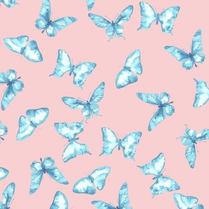 Butterflies for Lily