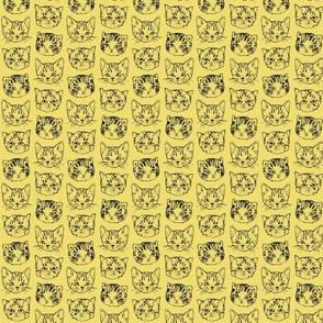 Cute Cats   Mustard Yellow