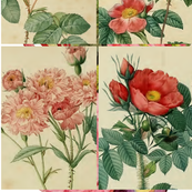 Antique_Roses_-_Pinks_and_Reds_-_10cm_by_15cm_Rectangles