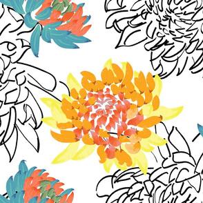 Chrysanthemum Outlines