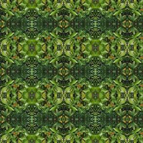 Citrus Garden Gems (Ref. 4261)