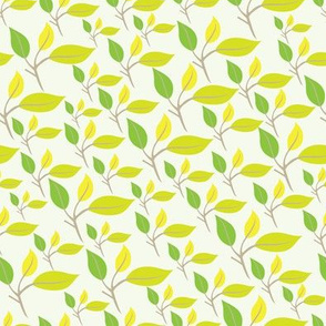 Lemonade leaves in yellow