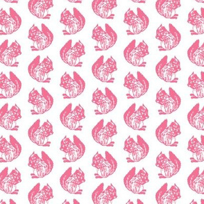 Frederica Squirrel Pink on White