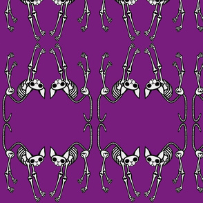 SphynxieBonez Arched Back Face to Face in Purple